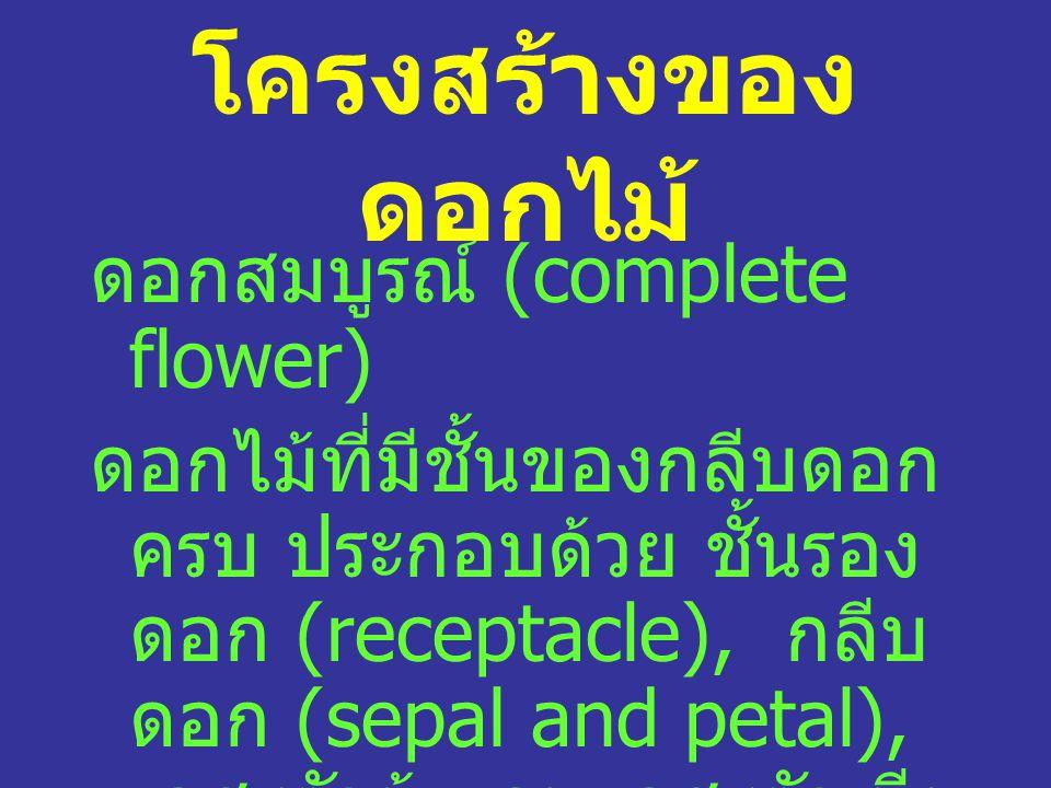 โครงสร้างของดอกไม้ ดอกสมบูรณ์ (complete flower)