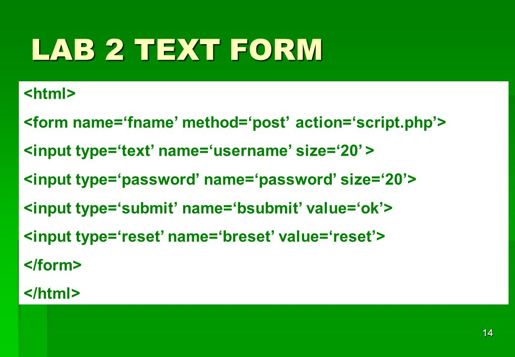 LAB 2 TEXT FORM <html>