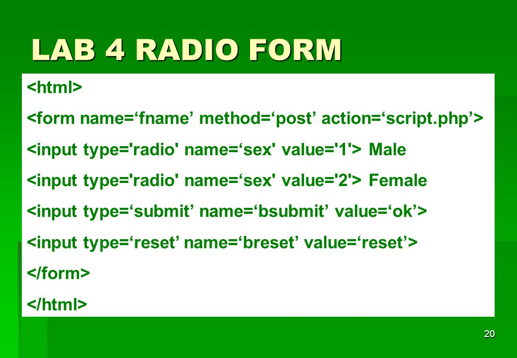 LAB 4 RADIO FORM <html>