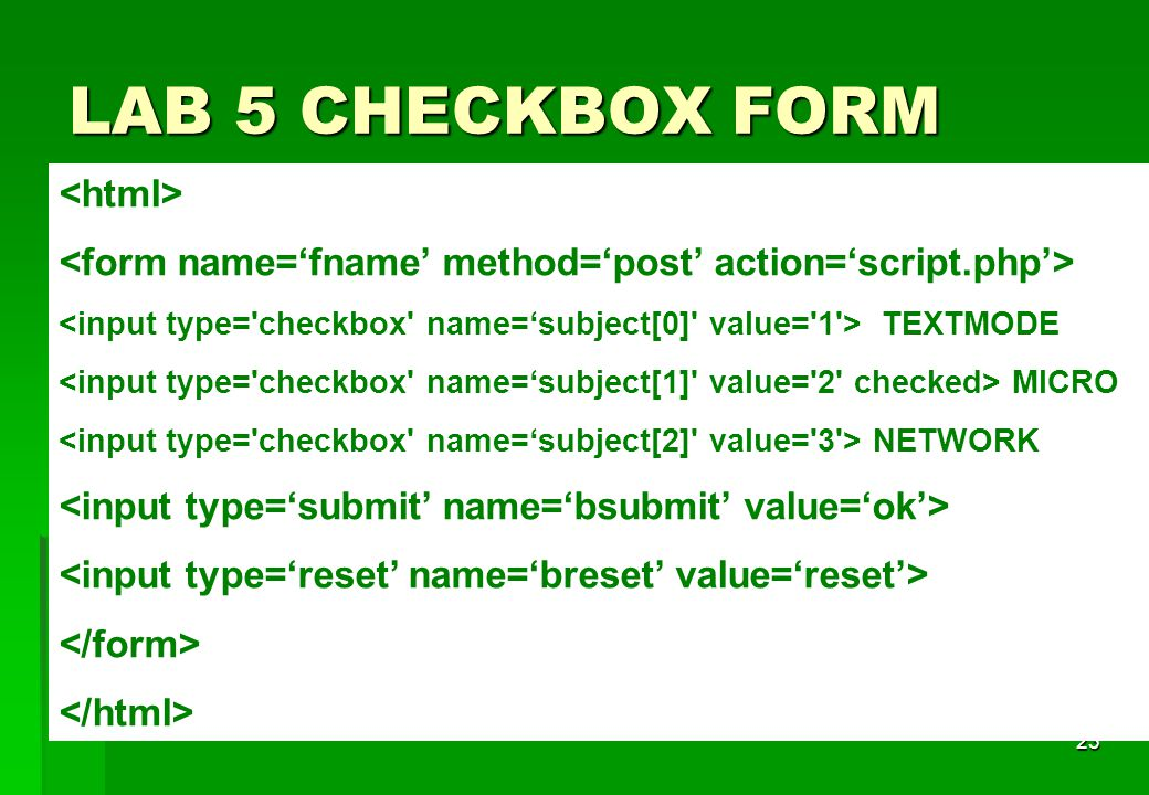 LAB 5 CHECKBOX FORM <html>