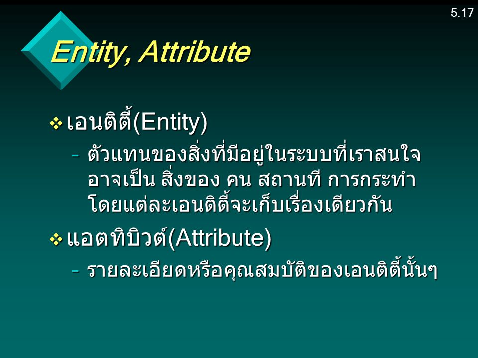 Entity, Attribute เอนติตี้(Entity) แอตทิบิวต์(Attribute)