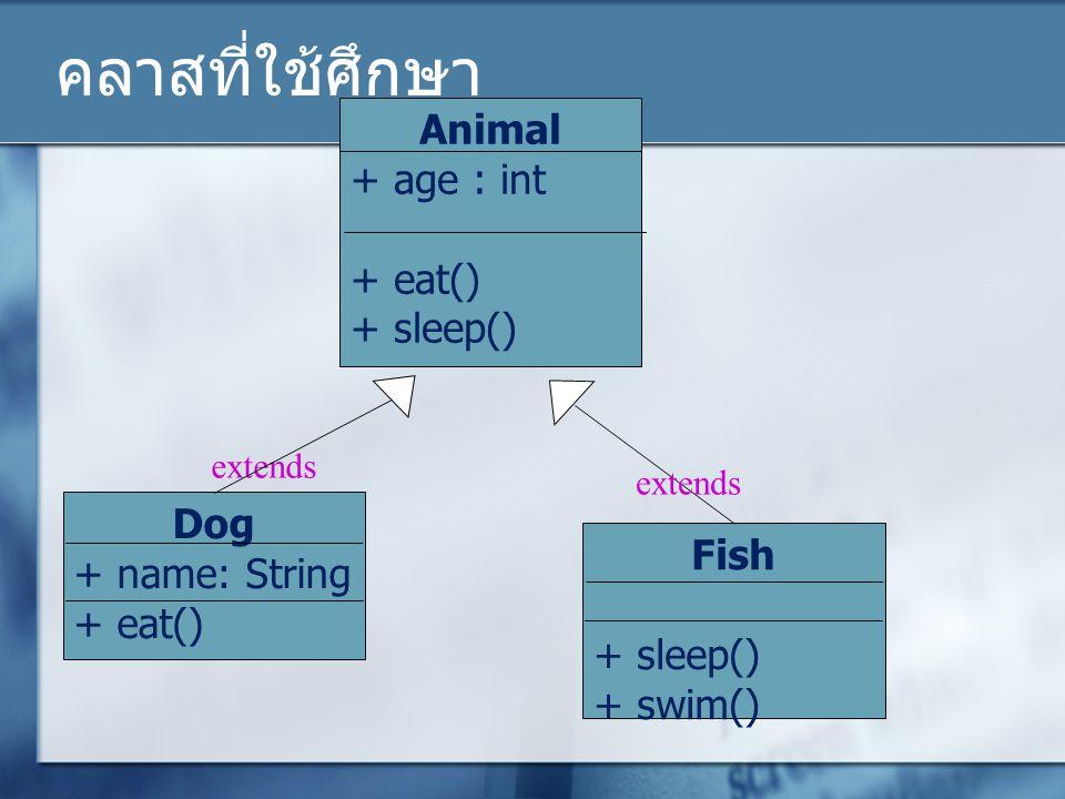 คลาสที่ใช้ศึกษา Animal + age : int + eat() + sleep() Dog