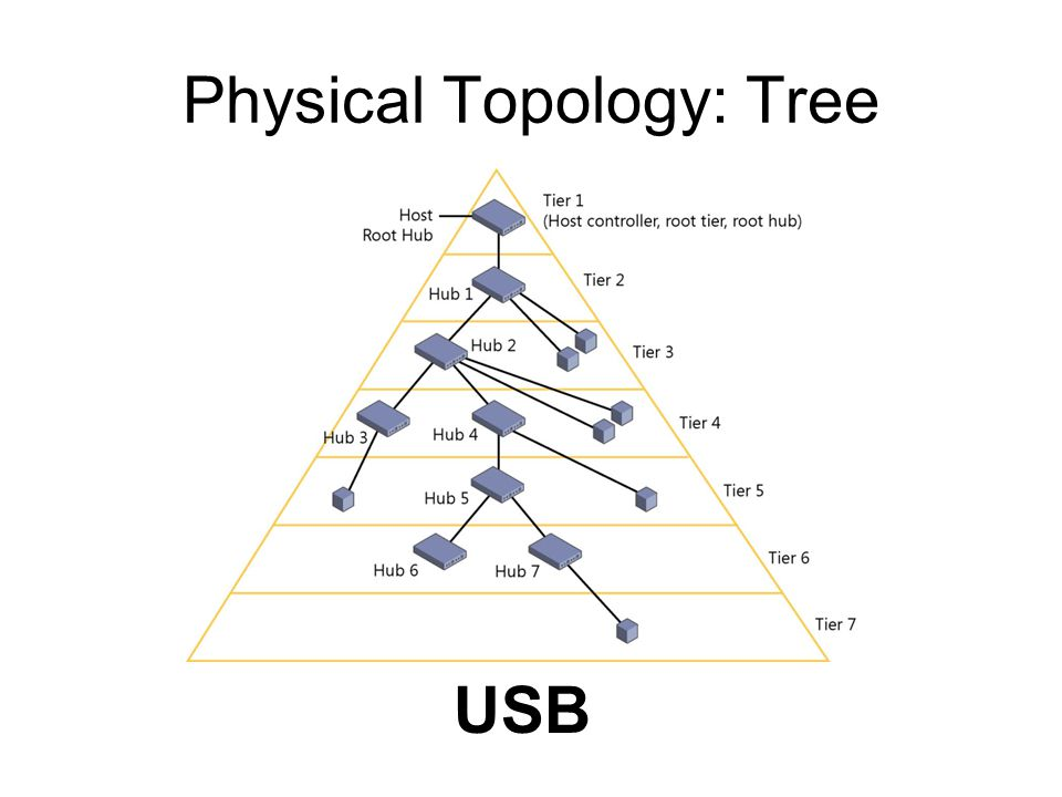 Physical Topology: Tree