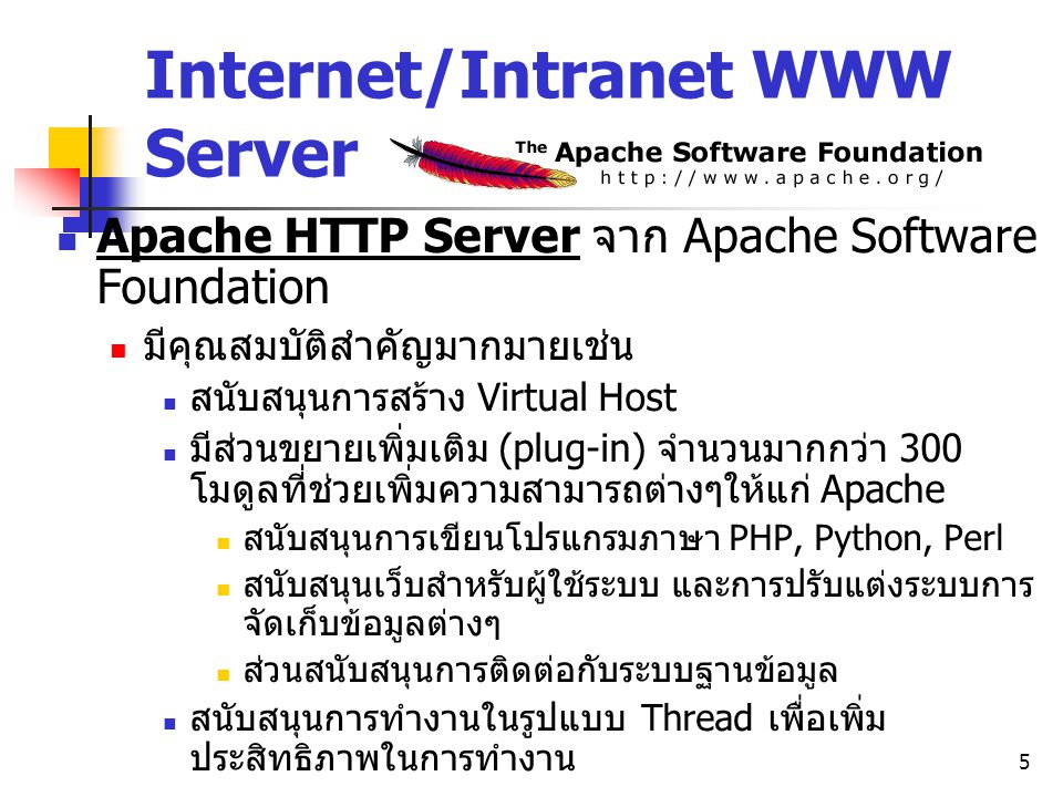 Internet/Intranet WWW Server