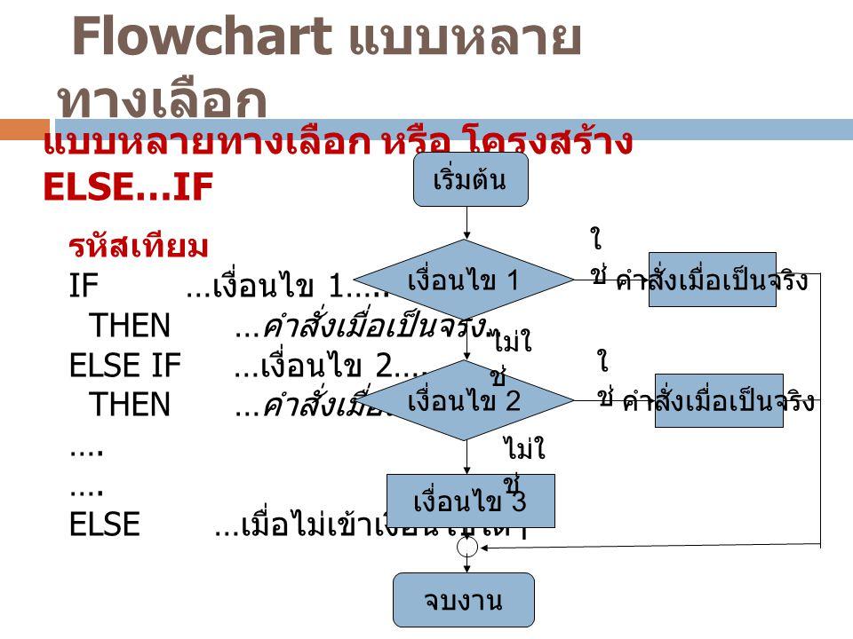 Flowchart แบบหลายทางเลือก