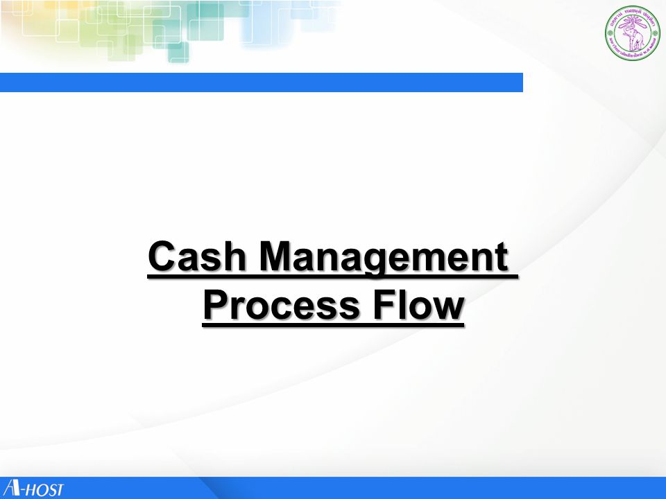 Cash Management Process Flow
