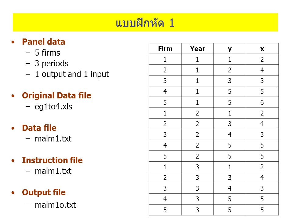 แบบฝึกหัด 1 Panel data 5 firms 3 periods 1 output and 1 input
