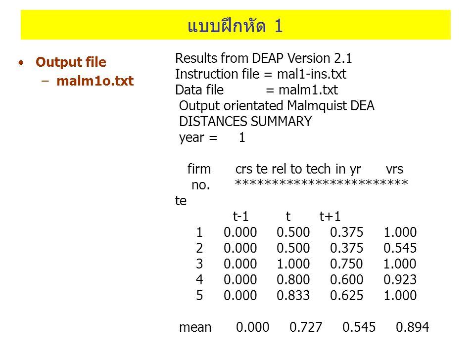 แบบฝึกหัด 1 Results from DEAP Version 2.1 Output file