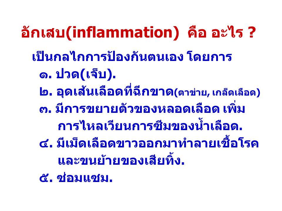 อักเสบ(inflammation) คือ อะไร