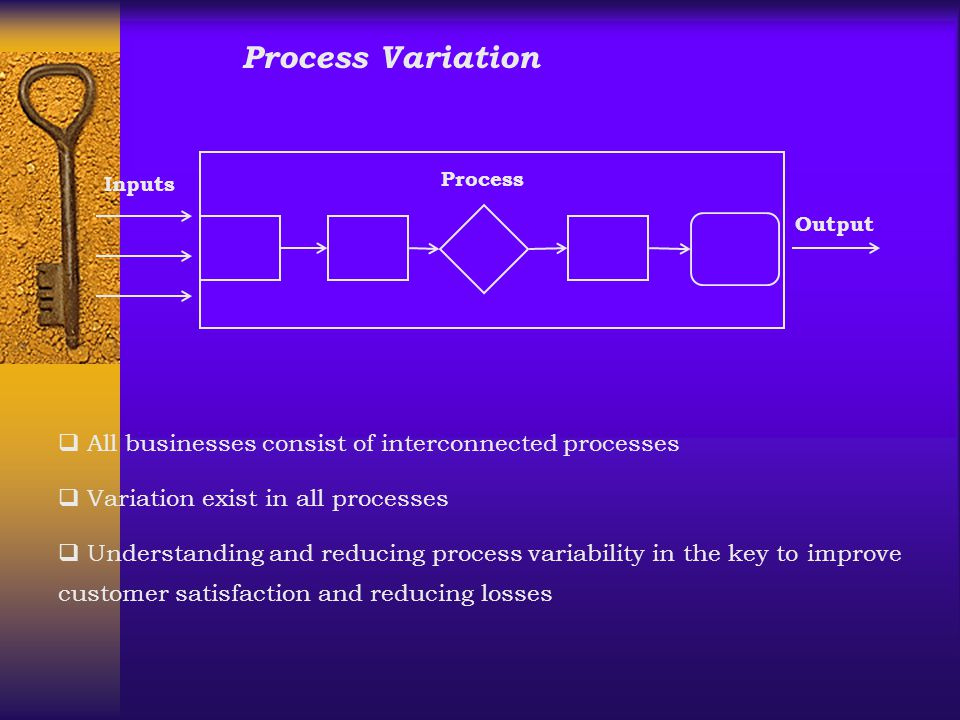 Process Variation All businesses consist of interconnected processes
