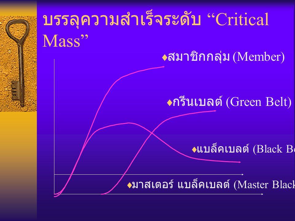 บรรลุความสำเร็จระดับ Critical Mass