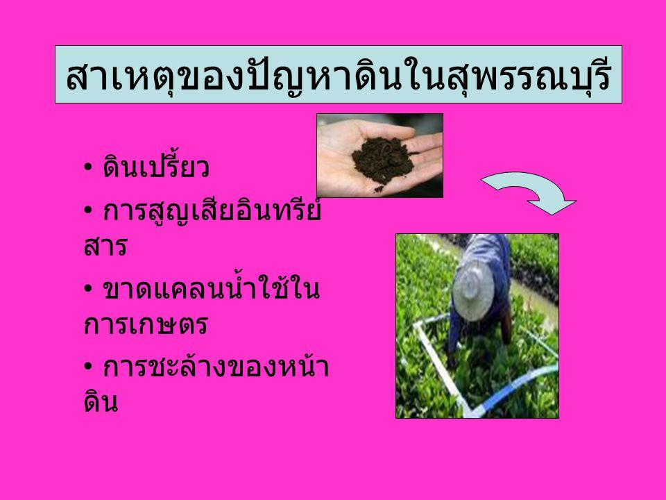 สาเหตุของปัญหาดินในสุพรรณบุรี