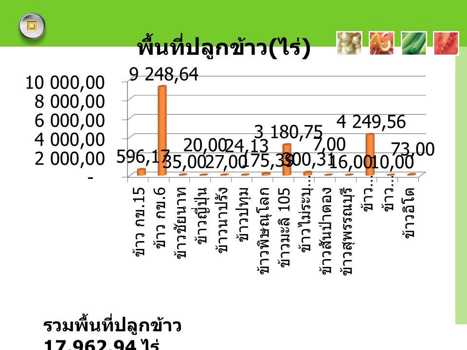 รวมพื้นที่ปลูกข้าว 17,962.94 ไร่
