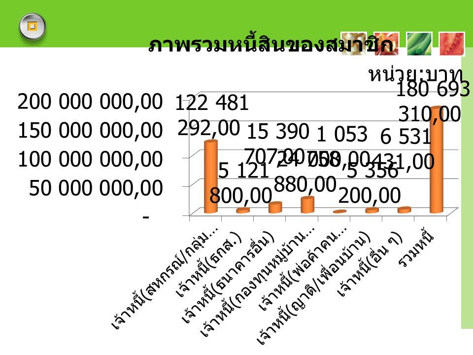 ภาพรวมหนี้สินของสมาชิก
