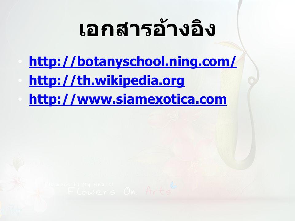 เอกสารอ้างอิง http://botanyschool.ning.com/ http://th.wikipedia.org