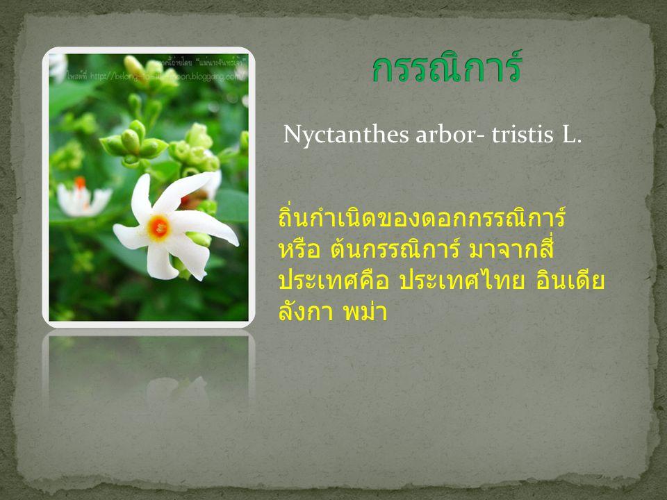 กรรณิการ์ Nyctanthes arbor- tristis L.