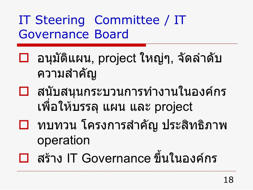 IT Steering Committee / IT Governance Board