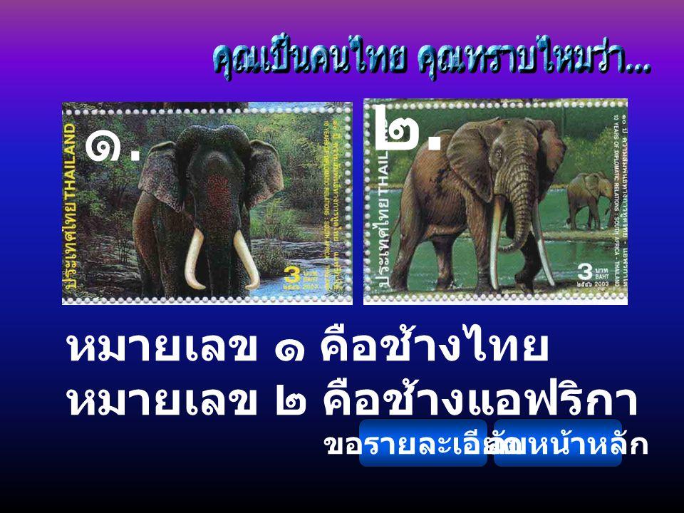 ๒. ๑. หมายเลข ๑ คือช้างไทย หมายเลข ๒ คือช้างแอฟริกา ขอรายละเอียด