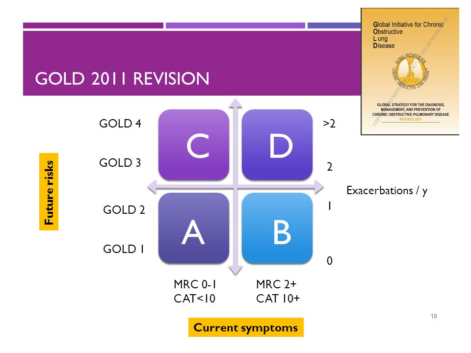 C D A B GOLD 2011 revision GOLD 4 >2 GOLD 3 2 Future risks