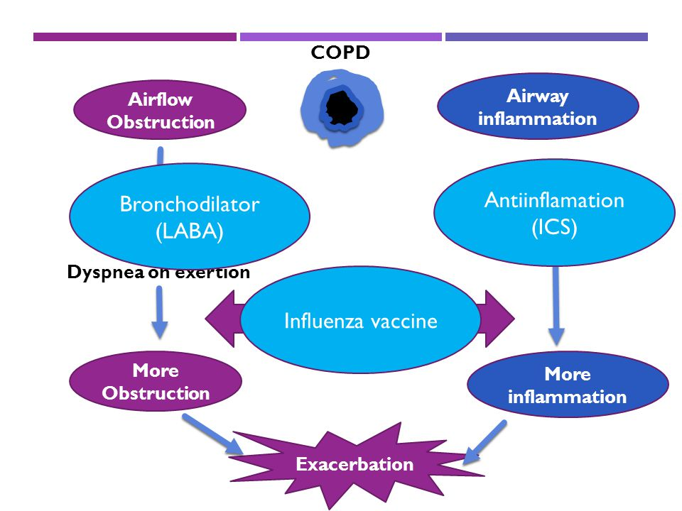 Antiinflamation Bronchodilator (ICS) (LABA) Influenza vaccine COPD