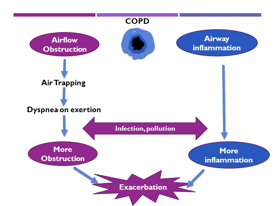 COPD Airway inflammation Airflow Obstruction Air Trapping