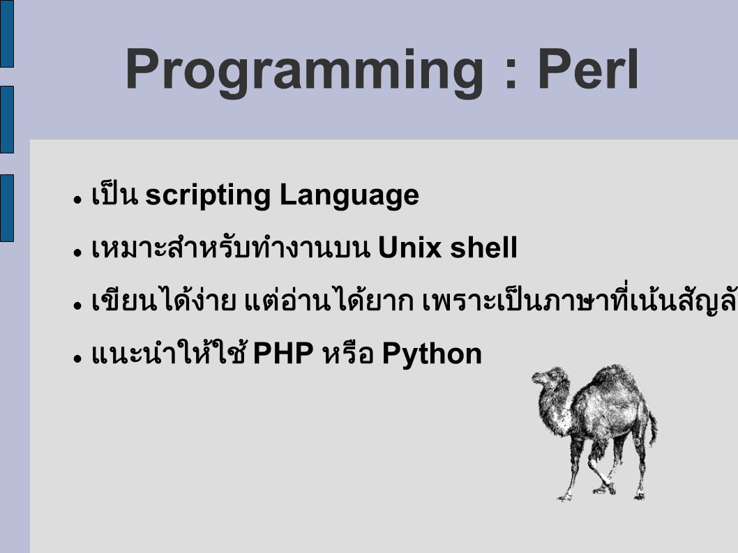 Programming : Perl เป็น scripting Language
