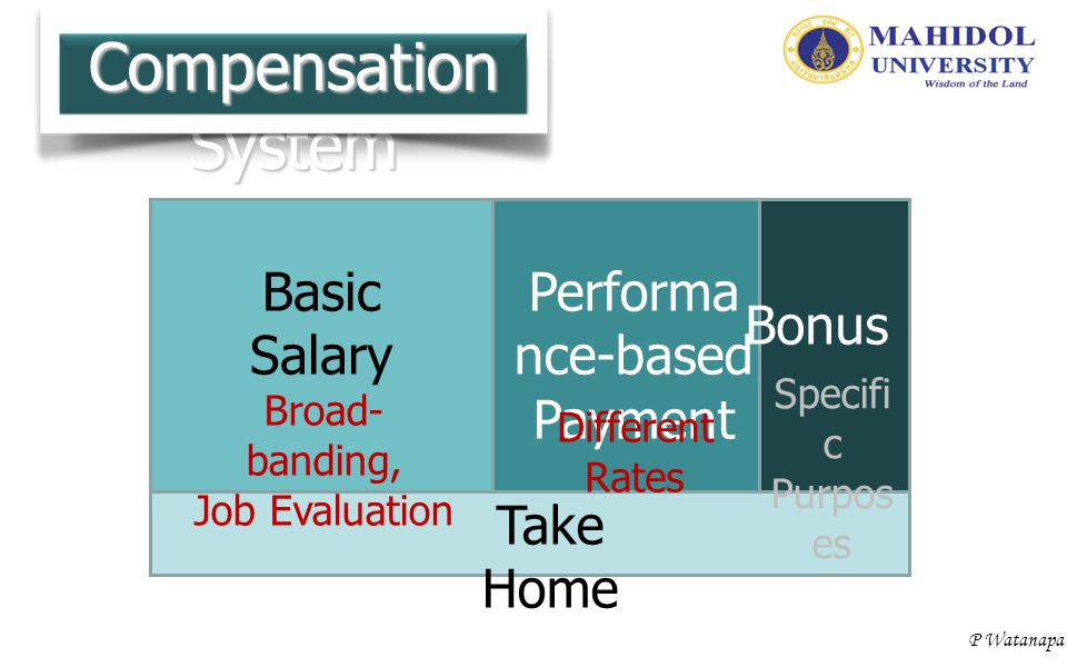 Compensation System Basic Salary Performance-based Payment Bonus