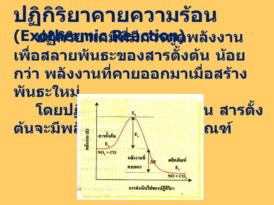ปฏิกิริยาคายความร้อน (Exothermic Reaction)