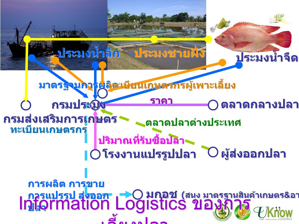Information Logistics ของการเลี้ยงปลา