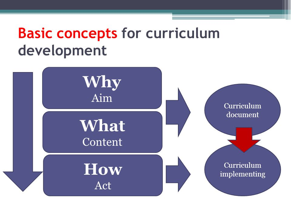 Basic concepts for curriculum development