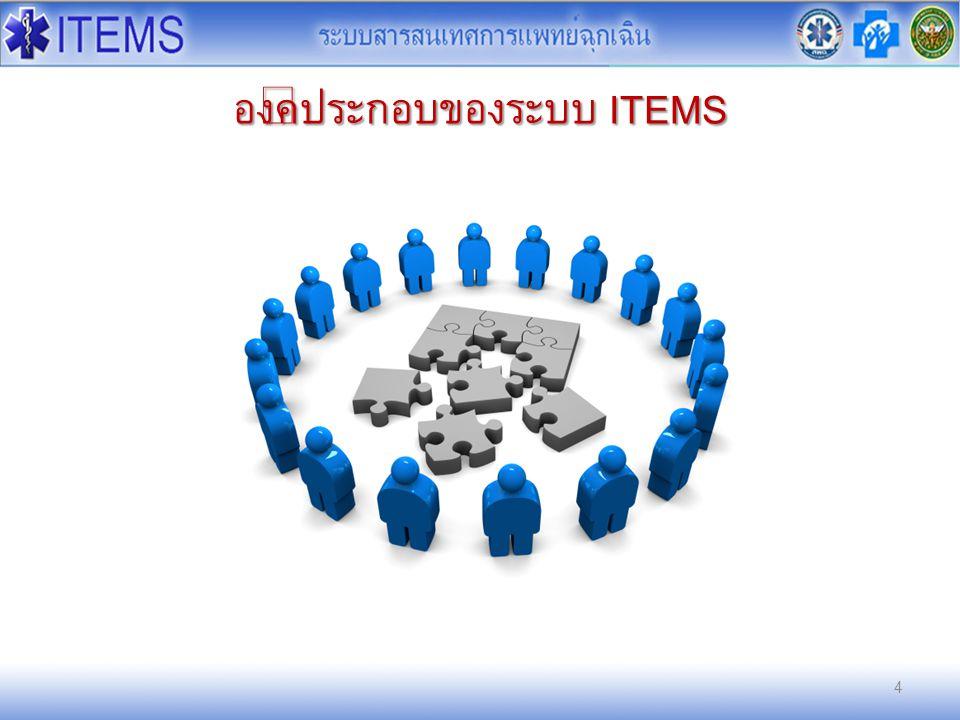 องค์ประกอบของระบบ ITEMS