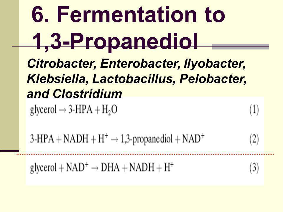 6. Fermentation to 1,3-Propanediol