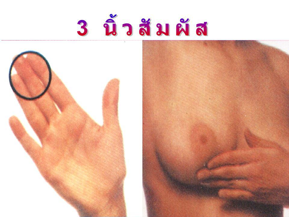 3 นิ้วสัมผัส