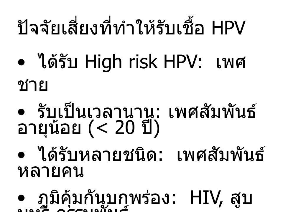 ปัจจัยเสี่ยงที่ทำให้รับเชื้อ HPV