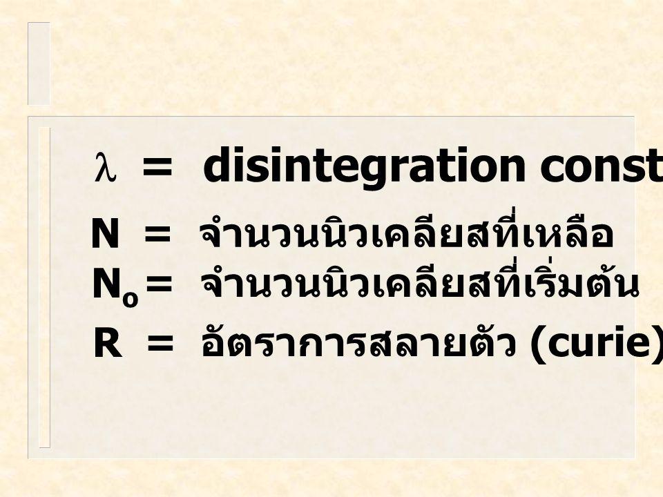 l = disintegration constant