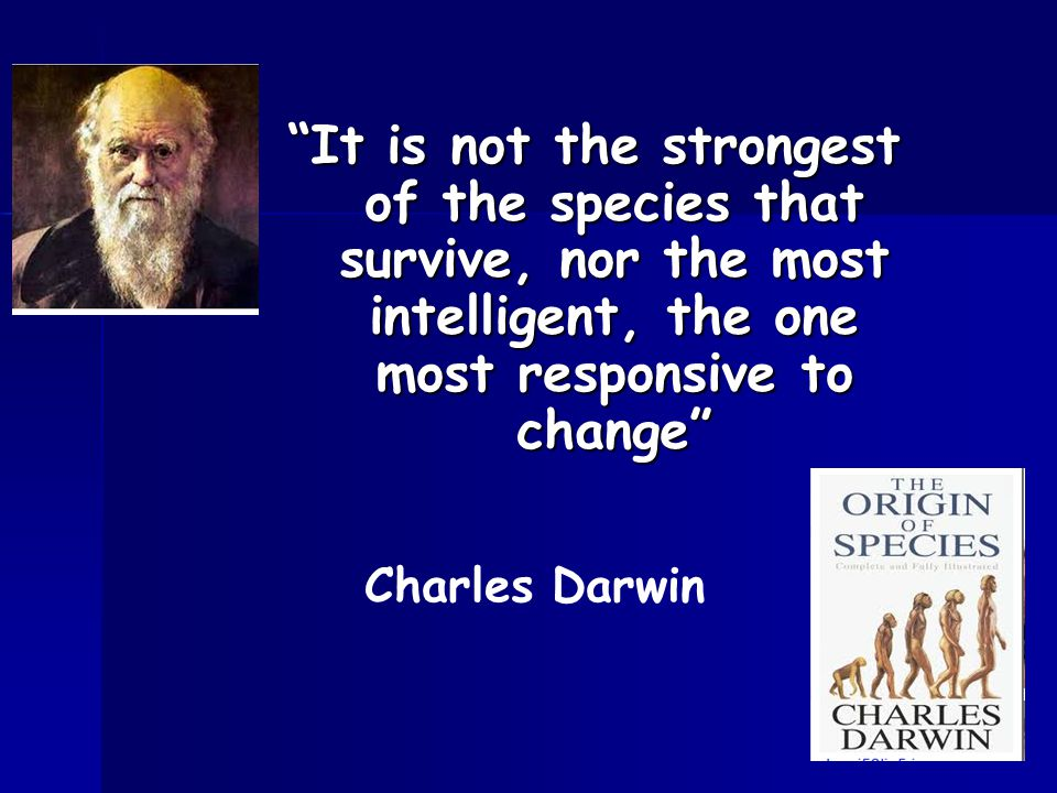 It is not the strongest of the species that survive, nor the most intelligent, the one most responsive to change