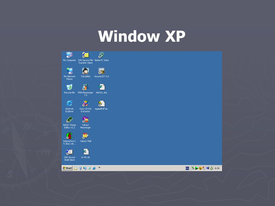 Window XP
