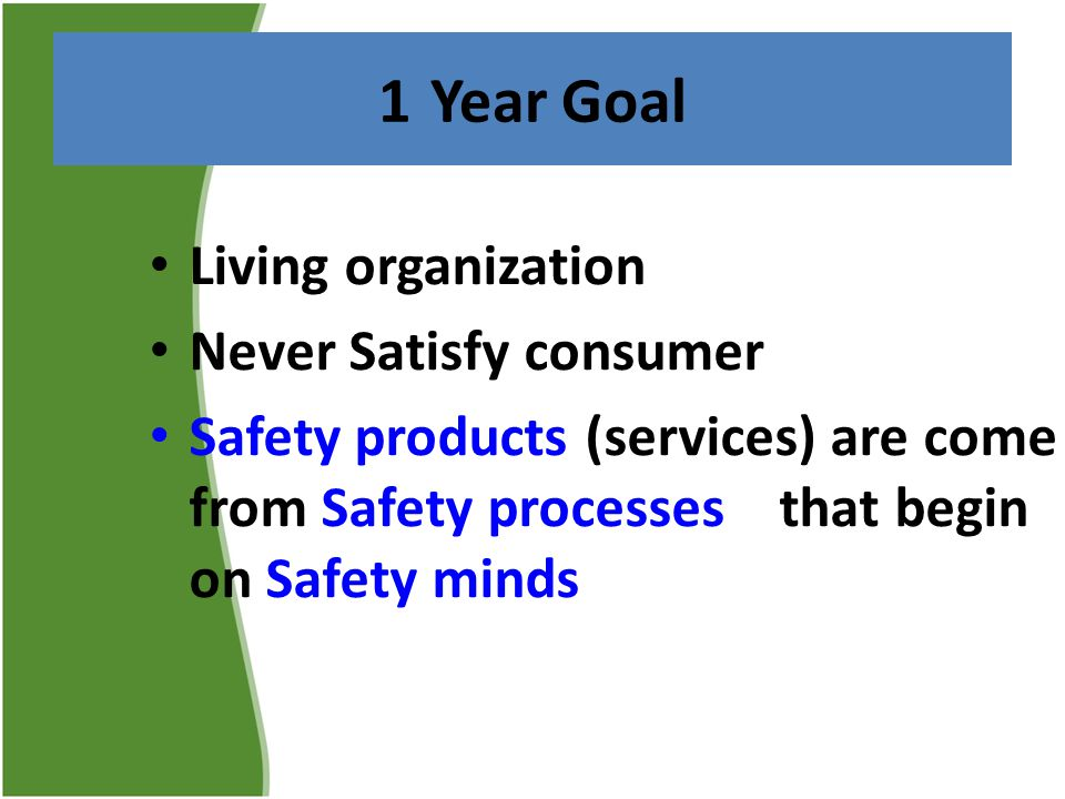 1 Year Goal Living organization Never Satisfy consumer