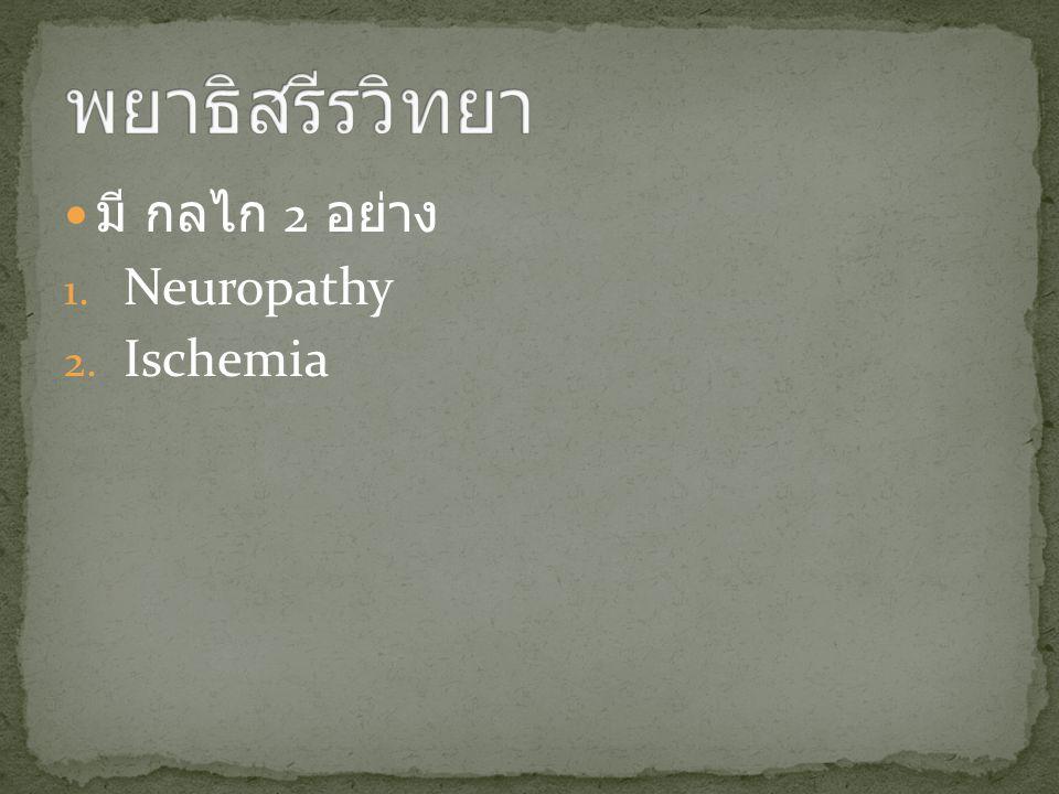 พยาธิสรีรวิทยา มี กลไก 2 อย่าง Neuropathy Ischemia