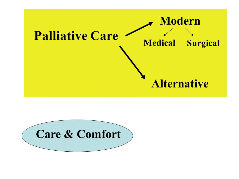 Modern Palliative Care Medical Surgical Alternative Care & Comfort