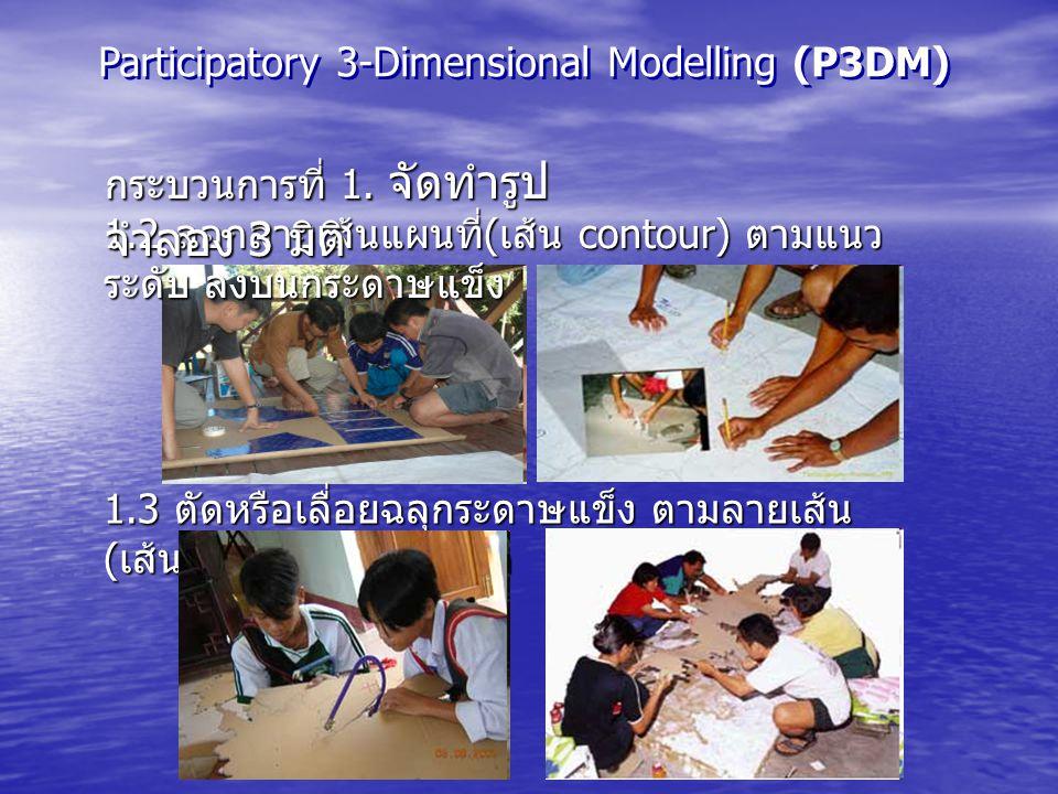 Participatory 3-Dimensional Modelling (P3DM)