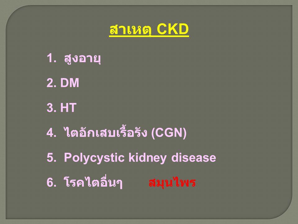สาเหตุ CKD 1. สูงอายุ 2. DM 3. HT 4. ไตอักเสบเรื้อรัง (CGN)