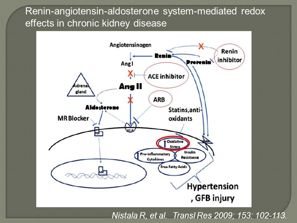 x x x Renin-angiotensin-aldosterone system-mediated redox