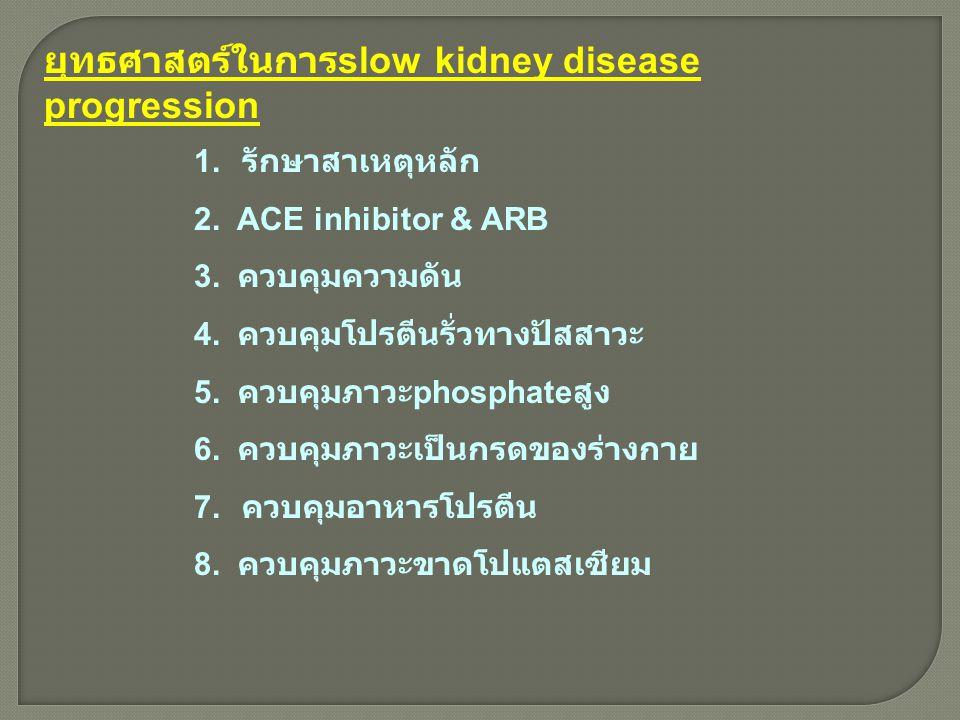 ยุทธศาสตร์ในการslow kidney disease progression