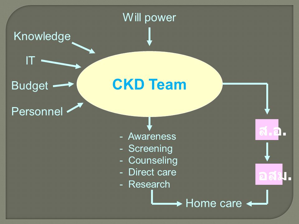 CKD Team ส.อ. อสม. Will power Knowledge IT Budget Personnel Home care