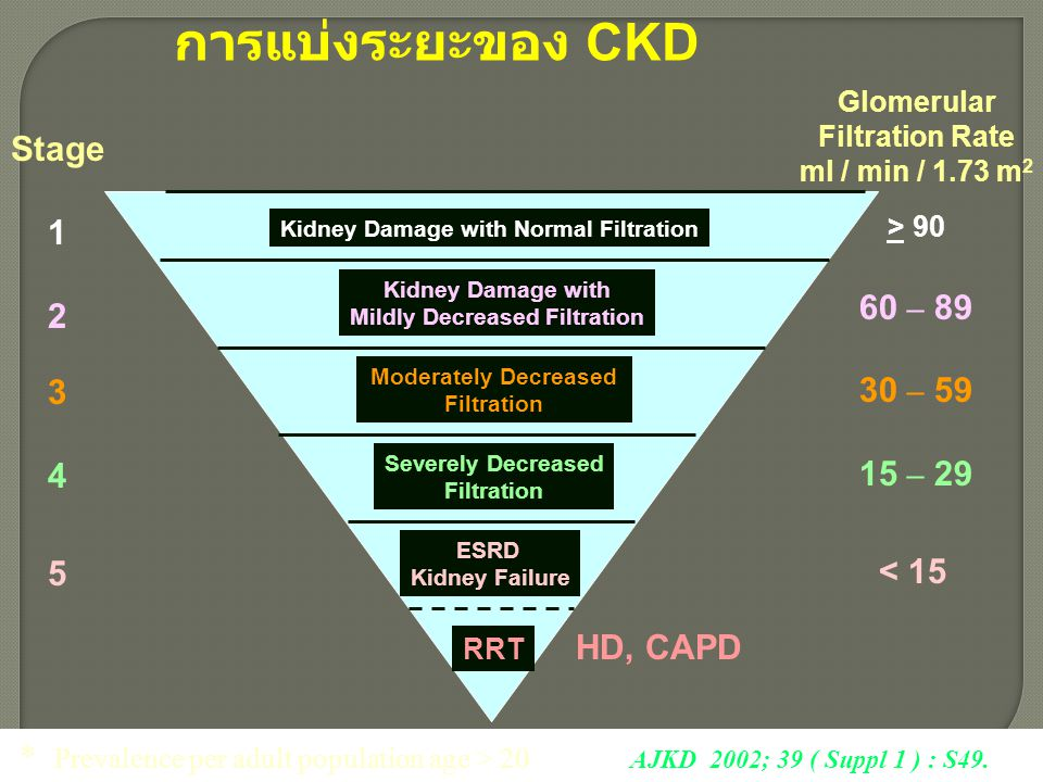 Kidney Damage with Normal Filtration Mildly Decreased Filtration