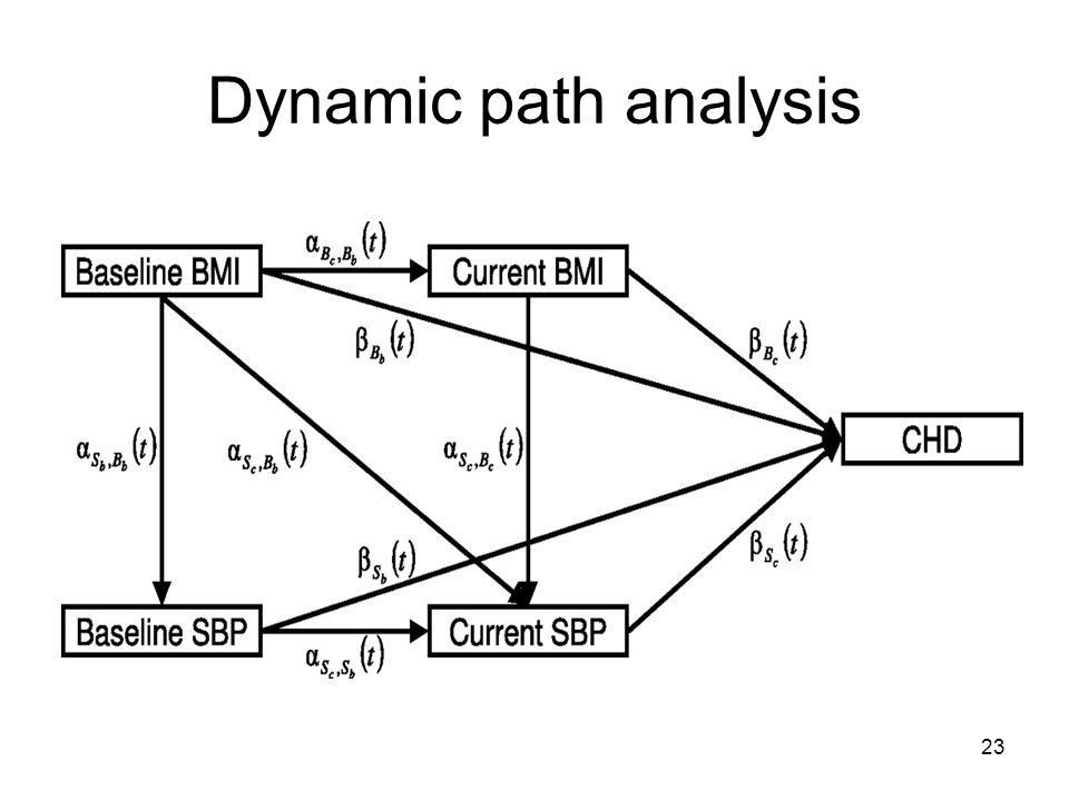 Dynamic path analysis