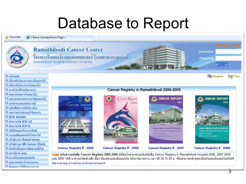 Database to Report