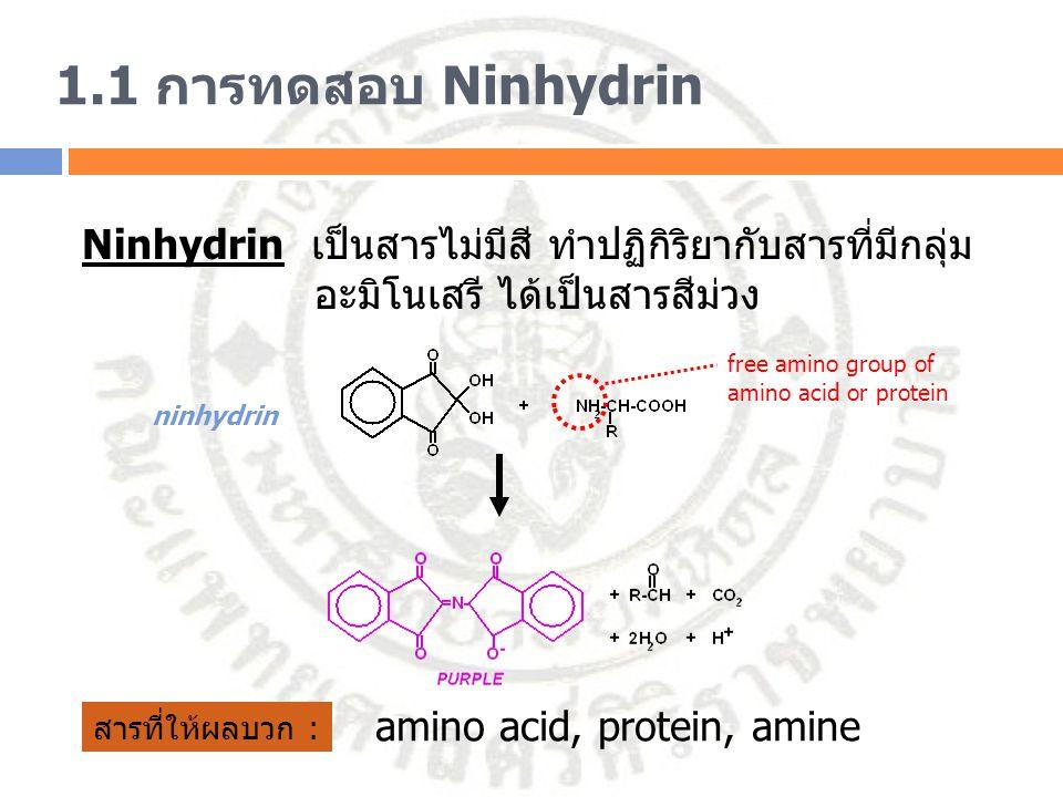 1.1 การทดสอบ Ninhydrin Ninhydrin เป็นสารไม่มีสี ทำปฏิกิริยากับสารที่มีกลุ่ม. อะมิโนเสรี ได้เป็นสารสีม่วง.