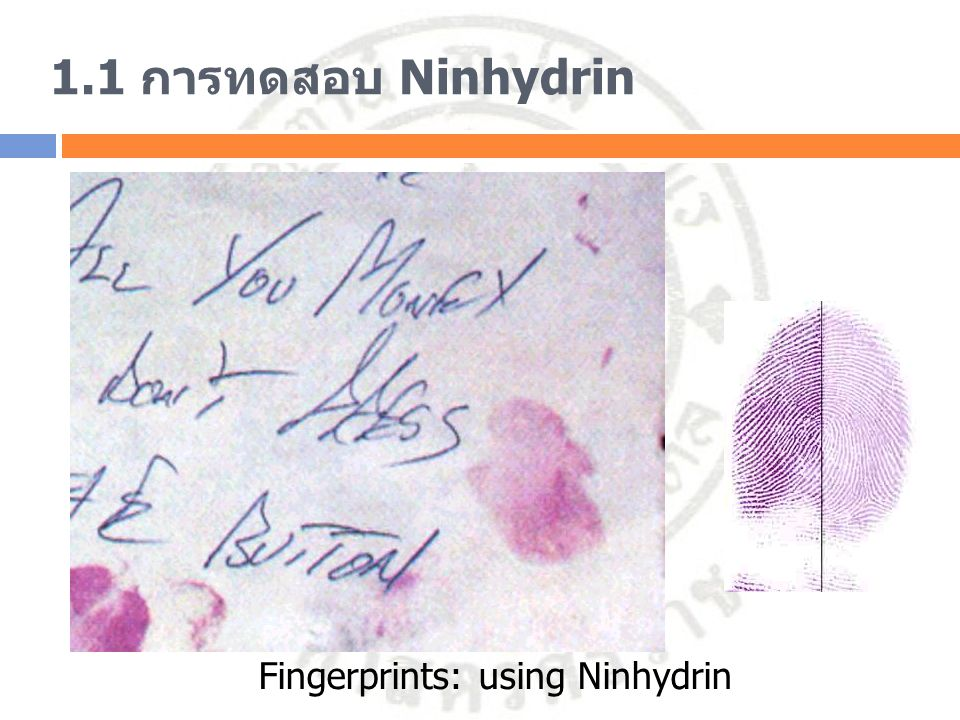 Fingerprints: using Ninhydrin